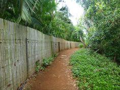Trail to Secret Beach, Kauai. Love this Beach! (Memories: Muddy, Tidal Pools, Beautiful Homes) sc