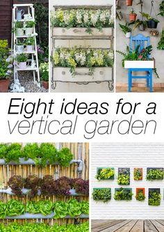 Nincs elég helyed a kertben? Elég egy fal, és máris létrehozhatod a függőkertedet!