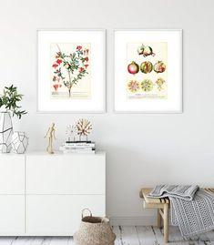 Botanical Wall Art, Botanical Prints, Diy Wall Art, Large Wall Art, Art Mural Photo, Grand Art Mural, Art Minimaliste, Impressions Botaniques, Scandinavian Art