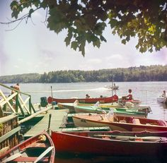 417 best history vintage maine images in 2019 maine new england rh pinterest com