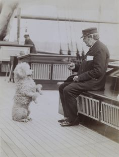 Poodle aboard an unknown yacht, late 19th century