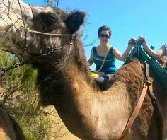 gran-canaria-maspalomas-camel-ride