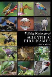 Helm Dictionary of Scientific Bird Names: James A. Jobling: 9781408125014: Amazon.com: Books
