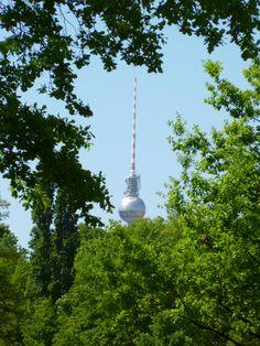 Der Berliner Fernsehturm, versteckt hinter sommerlichem Grün!