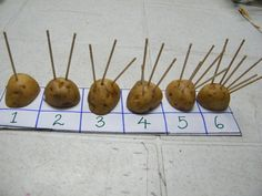 Potato Counter - This activity works on pincer grasp and hand strengthening by placing and counting toothpicks on fruits and vegetables. Maths Eyfs, Eyfs Activities, Motor Skills Activities, Counting Activities, Gross Motor Skills, Numeracy, Eyfs Classroom, Number Activities, Preschool Themes
