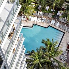 M I A M I Beach, the C O O L life #miami #miamibeach #lifestyle #cool #thesuites #nohotels