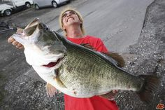 #BASS FISHING: World record bass... 22 lbs 4oz.......that would be heaven if that happened to me