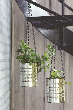 Easy diy suspended planters : reuse 975g aluminum coffee cans, add chains and hooks and paint them as you wish! Perfect for balcony and small appartments.