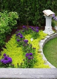 lime green groundcover and purple flowers