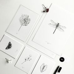Detailed illustrations in a minimalistic design. All illustrations are hand drawn by Anouk Corver, inkylines.