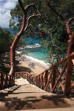 Staircase to Smugglers Cove, St. Lucia