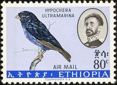 Village Indigobird stamps - mainly images - gallery format