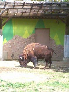Tobu Zoo Park