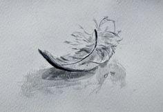 Christi Ferreira Art - Dove's Feather, watercolour