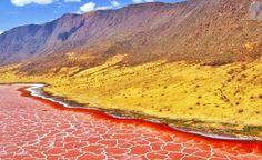Tanzanya'da ki Natron Gölü