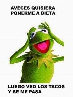 108 Mejores Imagenes De Rana Rene Rana Rene Memes De La Rana