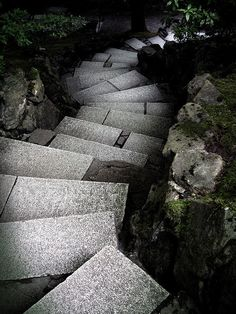 Crazy garden path... a little spooky, wonder what's down at the bottom...