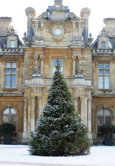 Christmas tree in front of the main entrance to Waddesdon Manor in the village of Waddesdon, Buckinghamshire, England. The house was built in the Neo-Renaissance style of a French château between 1874 and 1889 for Baron Ferdinand de Rothschild. Gabriel-Hippolyte Destailleur is one of the best-known foreign architects to have worked in 19th century England. The house stood in for the exterior of the fictional Haxby Park in the second season of Downton Abbey.  photographer - John Hackston