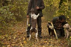 Cavatore Carlo Caporicci Leads a Hunt for Gastronomic Gems in the Umbrian Woodlands
