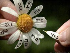 choose...YES!