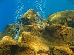 Gunung laut adalah sebuah gunung yang naik dari dasar laut yang tidak sampai naik hingga permukaan laut, dan dengan demikian bukanlah juga sebuah pulau
