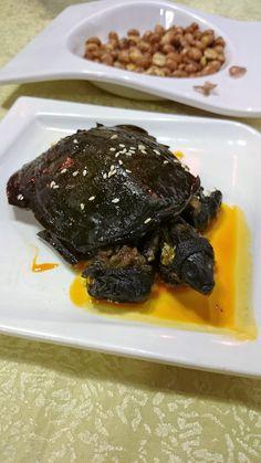 Afbeeldingsresultaat voor turtle for dinner