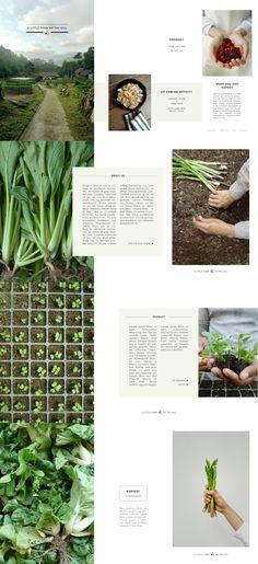 Photography_Layout_Design_Farm_Organic
