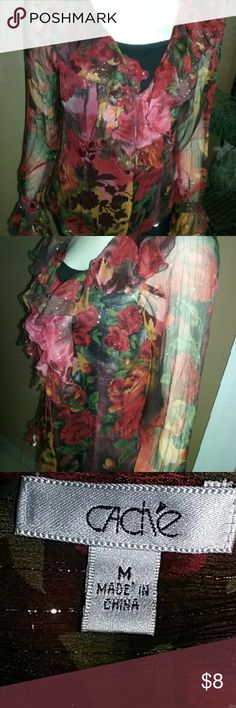 Cache top A multi colors long sleeve sheer top made of 92 percent silk and 6 percent lurex in good used condition. cache  Tops
