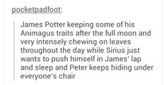 Okay, but how is Sirius's behavior towards James any different? I'm pretty sure he laid on James every chance he got because those two are basically an old married couple