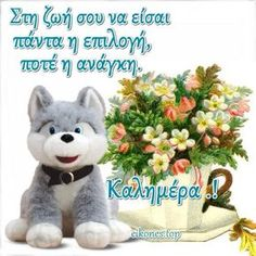 Good Morning Greetings, Teddy Bear, Animals, Celebrities, Messages, Animales, Celebs, Animaux, Teddy Bears