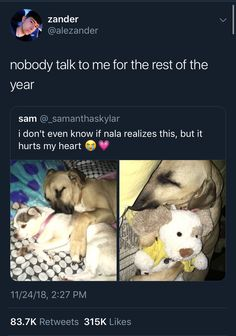 I'm literally crying. Cute Little Animals, Cute Funny Animals, Funny Cute, Funny Dogs, Cute Dogs And Puppies, I Love Dogs, Doggies, Cute Stories, Animal Memes