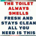 The Toilet Always Smells Fresh And Stays Clean. All You Need Is This - Healthy Magazine All You Need Is, Told You So, Baking Soda And Lemon, Homemade Shampoo, Loose Skin, Nail Fungus, Best Essential Oils, Cleaners Homemade, Skin Tightening