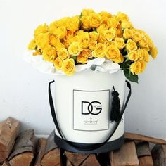 flower lab - Поиск в Google
