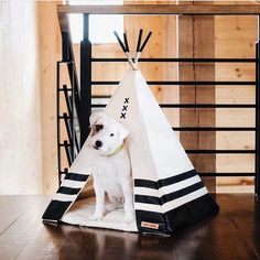 """546 Likes, 9 Comments - Design Milk Everyday (@designmilkeveryday) on Instagram: """"Much better than a #doghouse, these handmade #teepees by @wildandloyal will become your #dog's…"""""""