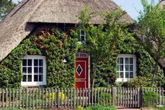 Small house with red door and green ivy