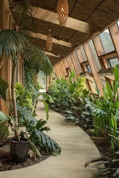 Grand Designs Earthship Te Timatanga - Earth Houses for Rent in Hikuai, Waikato, New Zealand