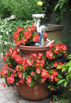 One way to beautify the entrance of your home is to place some flower pots close to the door. Here are several front door flower pots to inspire . Diy Planters, Flower Planters, Flower Containers, Shade Flowers, Types Of Flowers, Strawberry Pots, Brick Patterns Patio, Chinese Garden, Flower Boxes