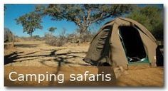 Camping safaris