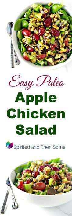 Easy Paleo Apple Chi