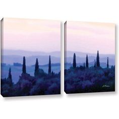 ArtWall Linda Parker Tuscan Morn 2 Piece Gallery-wrapped Canvas Set, Size: 24 x 36, Silver