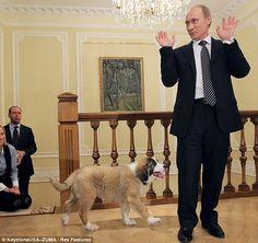 60 Bearlin Wall Ideas Putin Vladimir Putin Vladimir