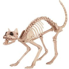 Kitty Bonez Halloween Decoration