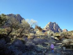 Spring Mountain State Park by wandering_off, via Flickr