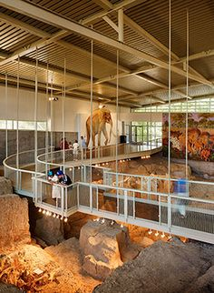 Visitors view fossils from the elevated walkway. Basic info fees, etc.