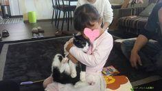 里親さんブログパンくんのお届け - http://iyaiya.jp/cat/archives/74481