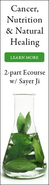 Join Sayer Ji, founder of Greenmedinfo.com, for this special online webinar beginning Sunday.   *Explore the latest, most up to date research & knowledge about food, natural healing and cancer.*  http://www.greenmedinfo.com/event/cancer-nutrition-natural-healing-live-event