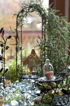 Johns garden