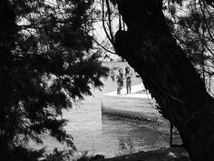 #play #son #children #Leros #grecia #tree #mediterraneo #sea #travel #vsco #gurusays #life