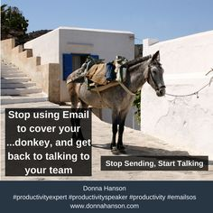 Stop covering your donkey with emails.