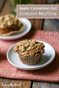 Apple Cinnamon Oat Einkorn Muffins. Spongey, filling, and freezer-friendly!